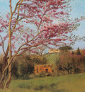 Godward Landscape Blossoming Red Almond