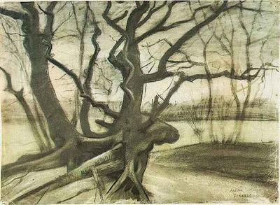 Etude dun arbre