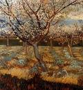 Gogh van Vincent Abricotiers en fleur Sun