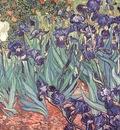 irises, van gogh, 1889 800x600 id