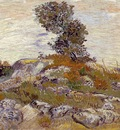 Van Gogh Rocks with Oak Tree
