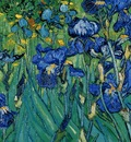 Vincent Van Gogh Iris detail , De