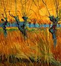 gogh willows