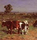 Haas Johannes Hubertus Leonardus De Cattle Grazing