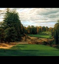 hallowed ground csg006 pine valley 18th hole
