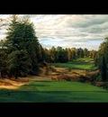 hallowed ground csg006 pine valley 18th hole