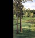 hallowed ground csg014 hazeltine 16th hole