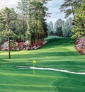 hallowed ground csg030 augusta national 6th hole