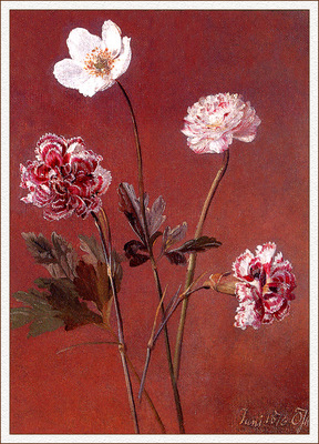 bs flo Oluf August Hermansen A Peony Pinks And An Anemone
