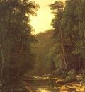 HETZEL, George, Woodland Stream, 1880, oil on canvas