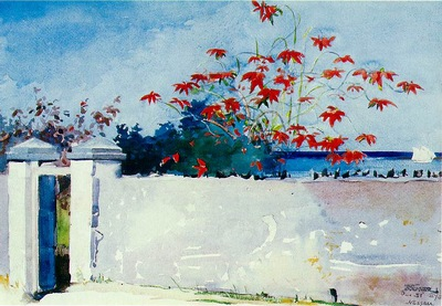 Homer A wall, Nassau, 1898, 37 5x54 cm, Watercolor, Metropol
