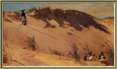 zfox swd wh 11 the sand dune