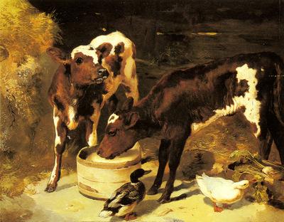 Horlor George W Calves Feeding