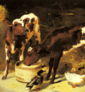 Horlor George W Calves Feeding