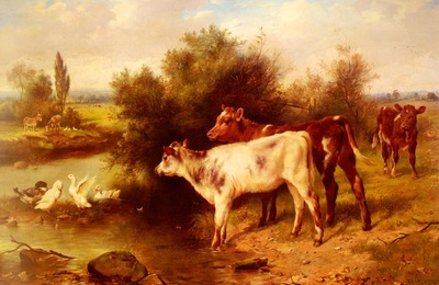 Hunt Walter Calves Watering
