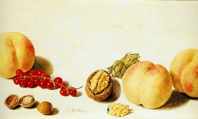 Huysum van Michiel Still life with fruit Sun