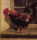Knip Ronner Henrietta Rooster Sun
