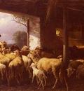 Mali Christian Friedrich Feeding The Sheep