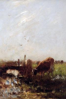 Maris Willem Cows at a brook Sun