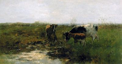 Maris Willem Drinking cows Sun