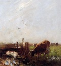 Maris Willem Cows at a brook Sun