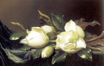 fl art029 martin johnson heade