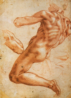 Michelangelo Study for an ignudo red chalk 279 x 214mm