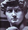 Michelangelo David detail
