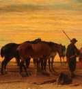 Moerenhout Joseph Jodocus Fishermen With Their Horses On The Beach