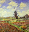 Claude Monet Tulip Fields in Holland