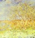 Claude Monet Vetheuil in the Summer