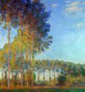 Monet Claude Peupliers au bord de lEpte Sun
