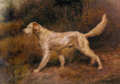 Osthaus Edmund Henry Commissioner A Champion English Setter