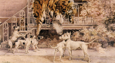 Osthaus Edmund Henry Hunting Tigers The Terriers