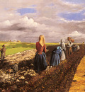 Pentelei Molnar Janos The Potato Harvest