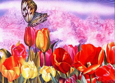 Tulip Butterfly