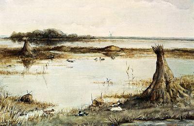 Poggenbeek Geo Ducks In A Landscape Near Kortenhoef