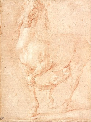 Puget Study of a Horse
