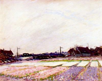 raphael hyacinth field, belgium c1914
