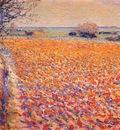 raphael tulip field, holland