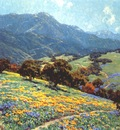 redmond california poppyfield c1920
