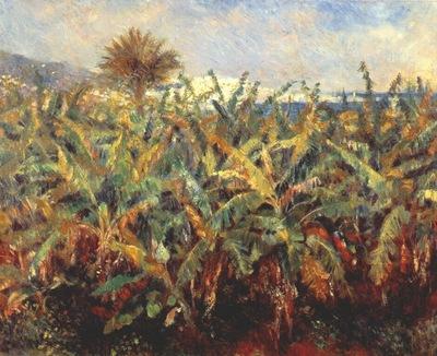 renoir banana plantation