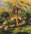 renoir the palm tree