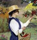 Mountain Orchard
