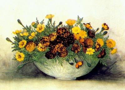 robbins marigolds
