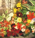 robbins flowers in a wood c1875