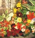 robbins flowers in a wood c1875