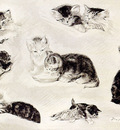 Ronner Knip Henriette A Study Of Cats Drinking Sleeping And Playing