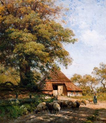 Sande van de Bakhuyzen Julius Sheepsherd Exloo Sun