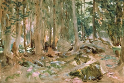 pine forest, sargent 1600x1200 id